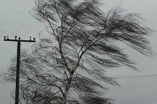 шквальный ветер.jpg
