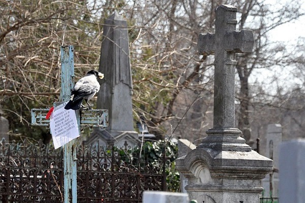 кладбище.jpg