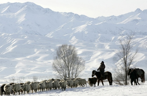 kyrgyzstan-06.jpg