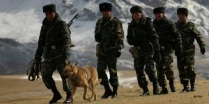 пограничники с собакой.jpg