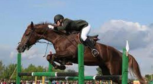 конный спорт.jpeg