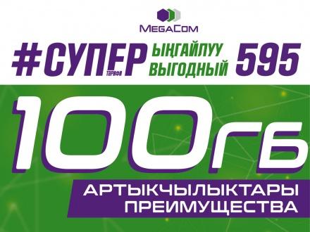 SV595-1200x900.jpg