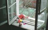 vipast-iz-okna.jpg