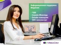MegaCom_Информационная поддержка.jpg