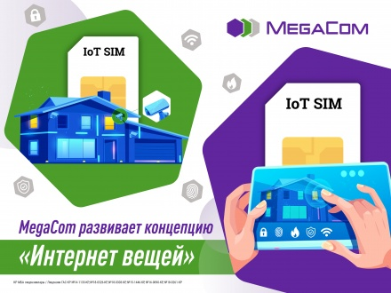 MegaCom_Интернет вещей.jpg